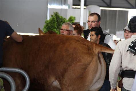film la vache tournage du film 171 la vache 187 avec jamel debbouze tournage
