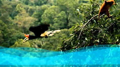 imagenes de paisajes naturales increibles fotos paisajes naturales hermosos e increibles del mundo