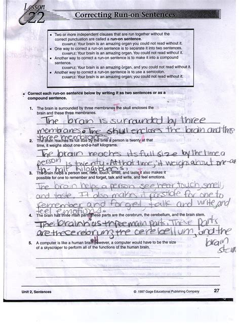 The Outsiders Theme Essay by The Outsider Essay Activities And Handouts For The Outsiders Novels Activities And The Outsiders