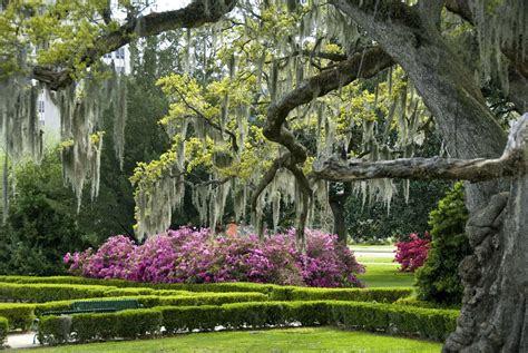 Garden Of La Your Baton Travelsouth Usa