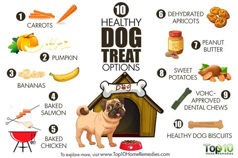 healthy for dogs 10 healthy treat options top 10 home remedies