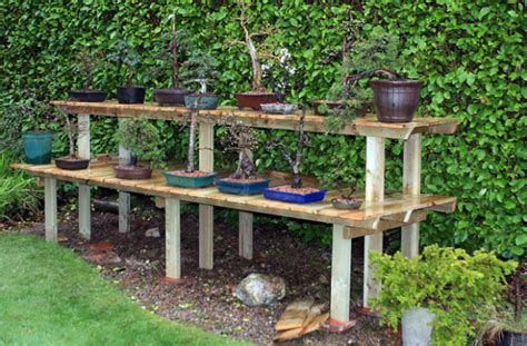 bonsai display bench bonsai display benches futterwithtrees