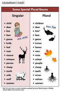 plural singular nouns all things grammar