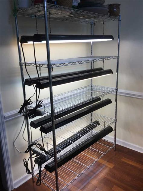 how to hang grow lights our grow light system the shelves are lonely right now