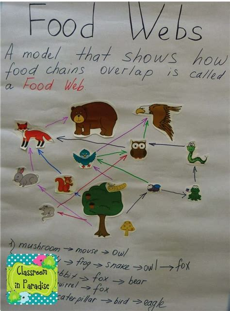 food webs on pinterest food chains science and food classroom in paradise art science integration food