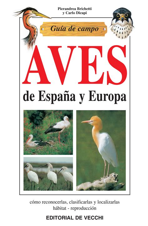 libro rojo de las aves de espa 241 guia de aves de espana y europa pdf comprar guia de las aves de espa 241 a y europa online