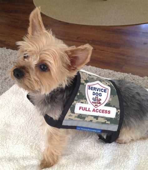 service dogs premium xx small and x small camo service vest