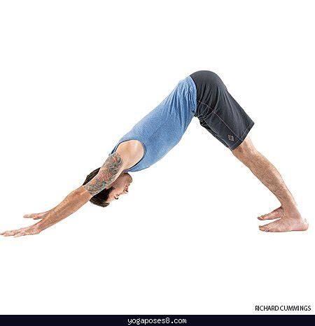 downward pose adho mukha svanasana downward facing pose poses yogaposes 174