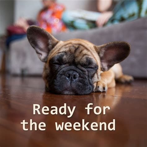 the weekend images ready for the weekend pictures photos and images for
