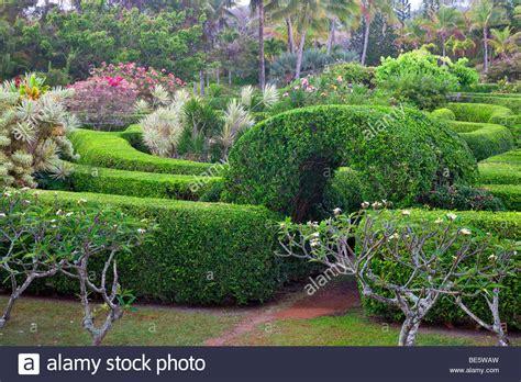 botanical gardens kauai na aina botanical gardens kauai hawaii stock photo
