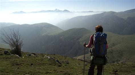 il camino walk walking the camino documentary offers a glimpse at real