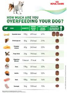 Whilst we all like to treat our dogs please look at this chart by