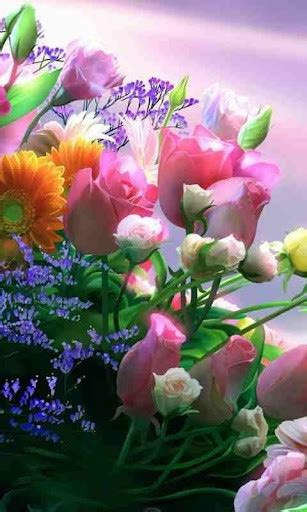 wallpaper flower live download flower live wallpapers for android by aqua apps