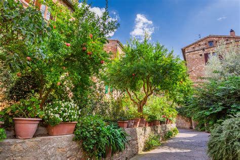 Mediterrane Gartengestaltung