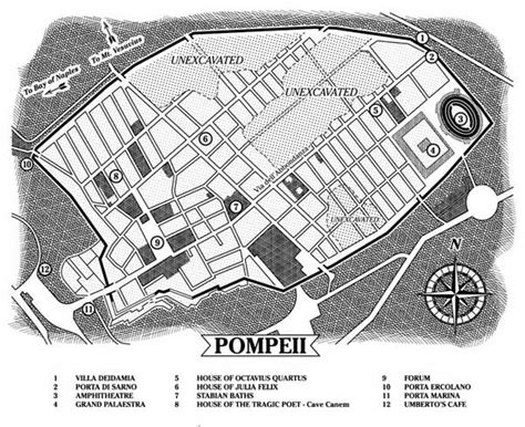 layout of pompeii house http www dogsofpompeii com images pompeii map jpg