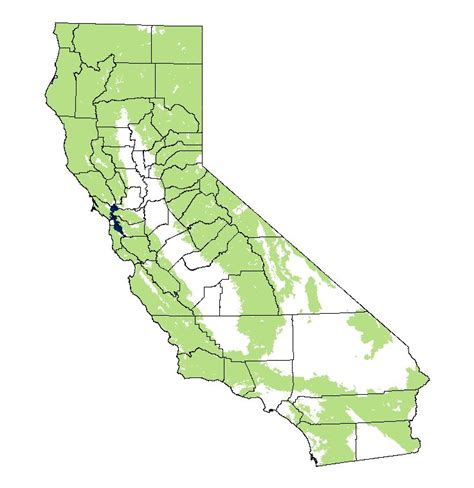 california mammal maps mountain felis