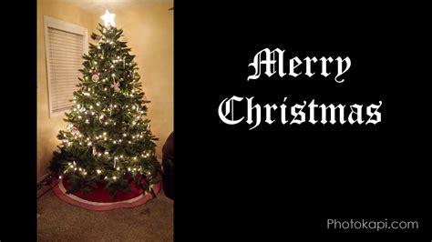 putting up the christmas tree time lapse photokapi com