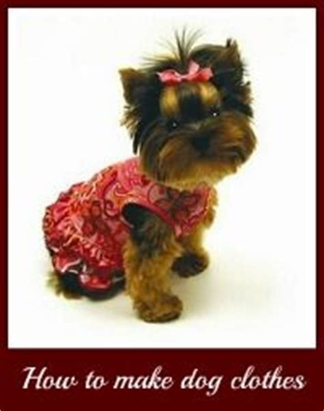 yorkie clothes patterns free best 25 clothes patterns ideas on