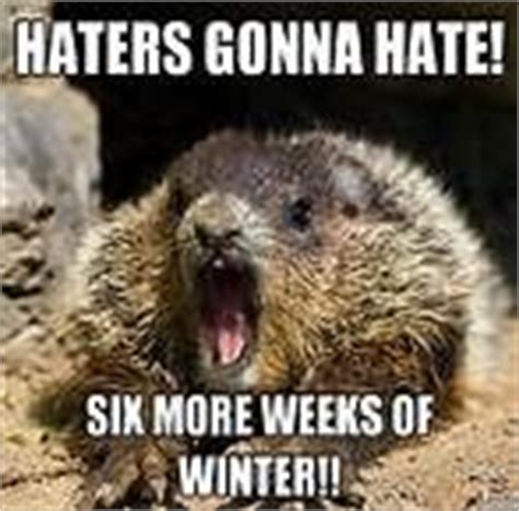 groundhog day rip offs its friday meme quotes its friday