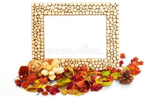 cornici fogli cornice vuota con i fiori ed i fogli secchi immagine stock