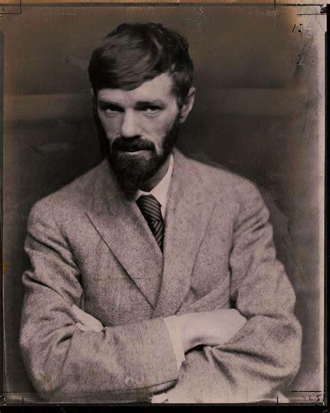 d h lawrence and 0141441550 d h lawrence lux creator