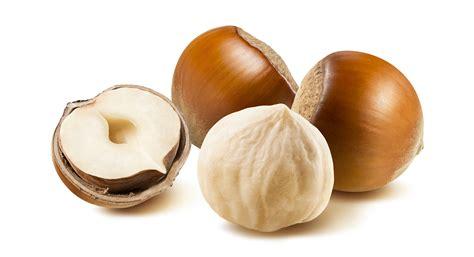 Hazelnut Organic hazelnut