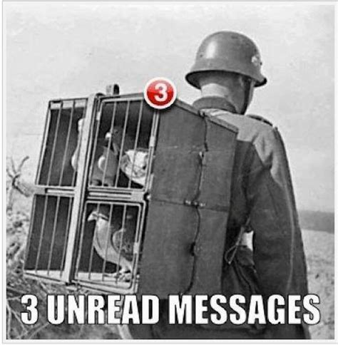 German Letter Joke german soldier pigeon post notifications joke pictures