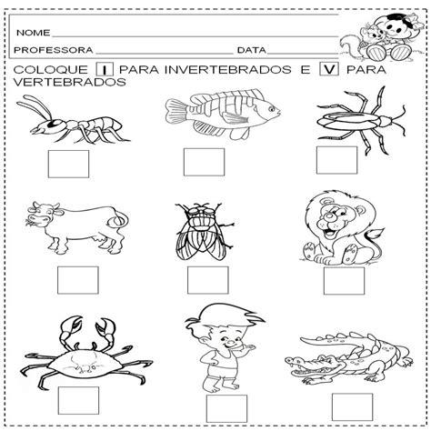 imagenes animales invertebrados para imprimir animales vertebrados e invertebrados para colorear imagui
