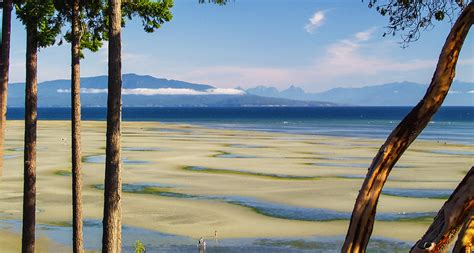 things to do parksville bc destination bc official site