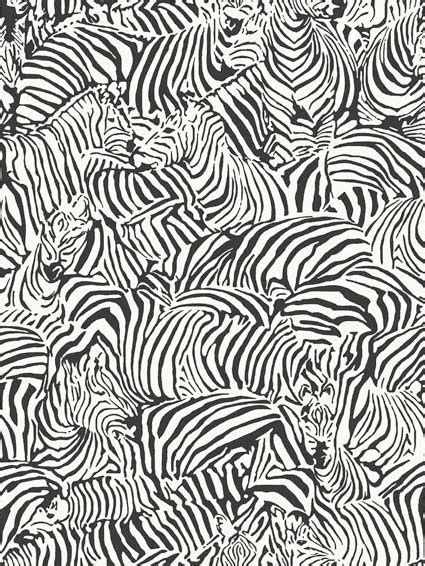 zebra wallpaper border for bedrooms zebra wallpaper border for bedrooms