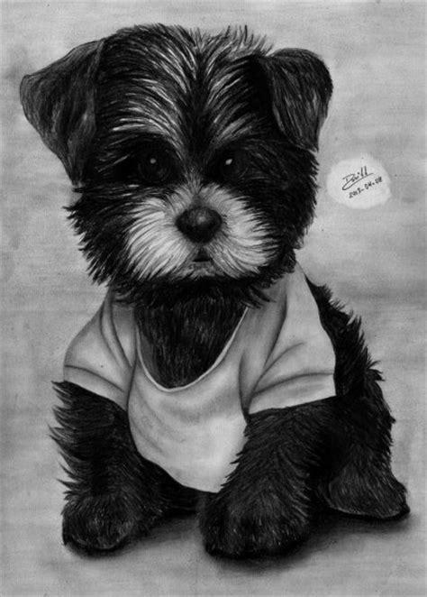 imagenes a lapiz de perritos imagenes de perros tiernos para dibujar a lapiz imagui