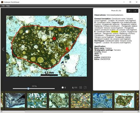 smectite thin section rockviewer petrography database endeeper