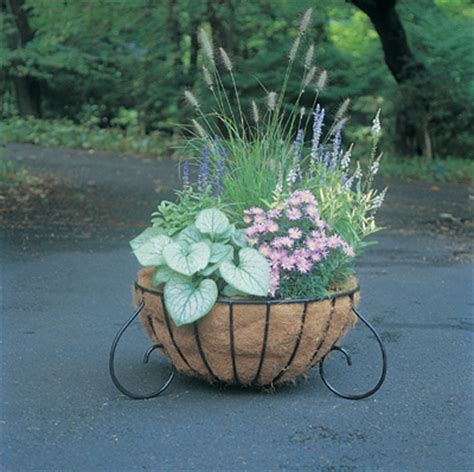 Moss Planter Liners by Cocofiber Liners Coco Moss Cocoa Liner Hay Liners