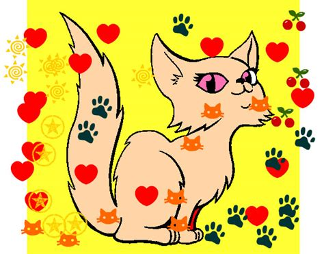 gatta persiana disegno gatta persiana colorato da prytty il 16 di gennaio