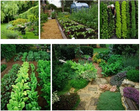 permaculture container gardening 421 best images about farm design on fruit