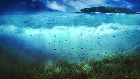 sea nature island fish artwork split view wallpapers