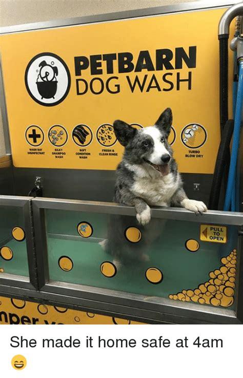 petbarn dog house wash per pet barn dog wash fresh clean rinse blow dry