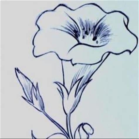 fiori da disegnare facili fiori facili da disegnare gpsreviewspot