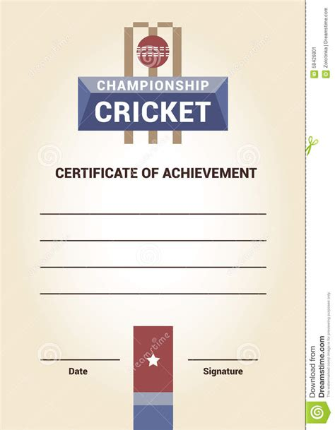 cricket certificate templates vector template certificate diploma cricket stock vector