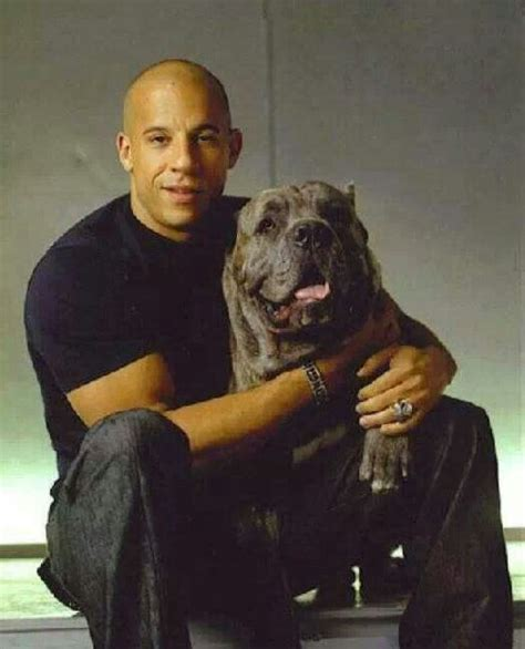 vin diesel relationships vin diesel and cane corso cane corso pinterest