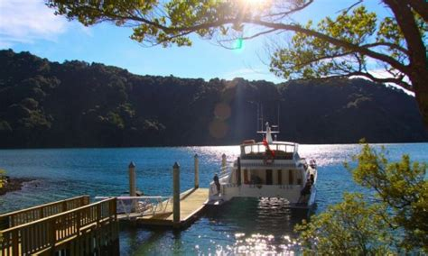boat charter picton new zealand marlborough sounds boat charter