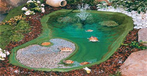 laghetti da giardino per tartarughe agraria verzegnassi laghetti per tartarughe