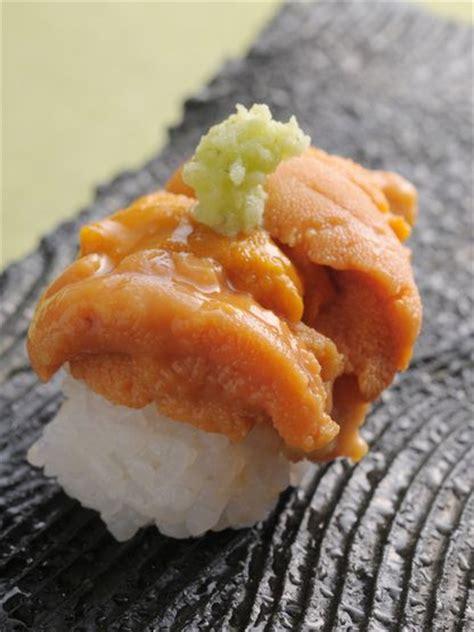 Eyewear Sashii 5 17 best images about sea urchin uni on the