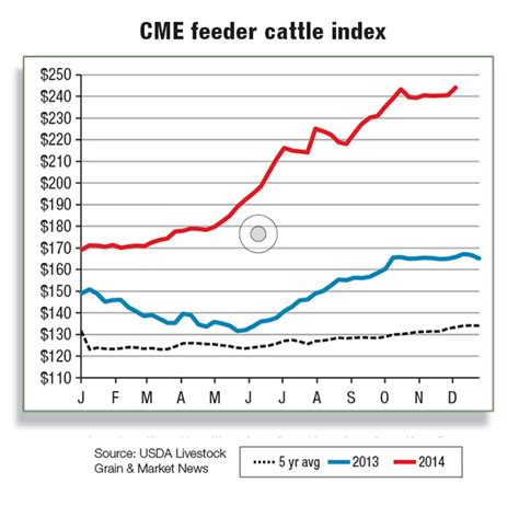 Cme Feeder Cattle Futures lower feeding costs help support heavier weights
