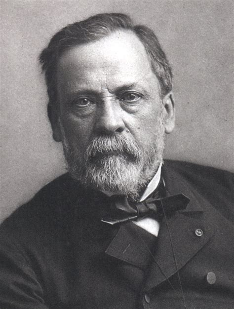 biography of louis pasteur shin pasteur biography