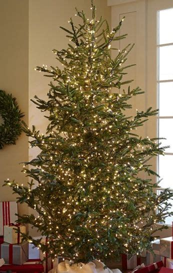 37 best christmas trees images on pinterest xmas trees