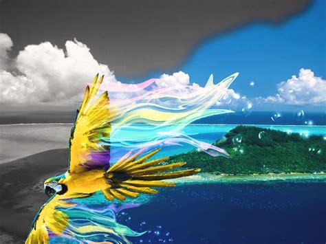 Colour Your World Colour Your World Soul Photos Color Wallpaper Of Desktop Hd Pics By Heavenwalls