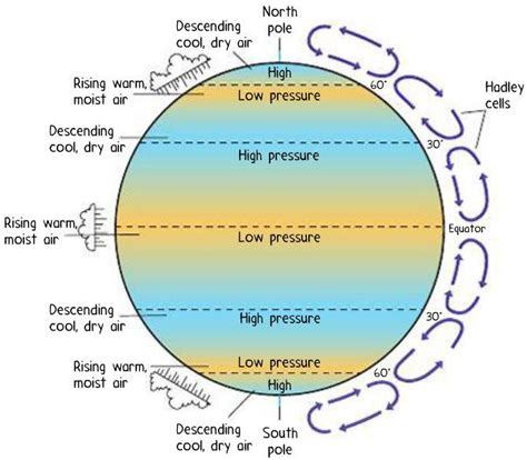 Convection Currents Produce The Heat In The Earth S Interior by Module 6 Earth Processes At Western Governors