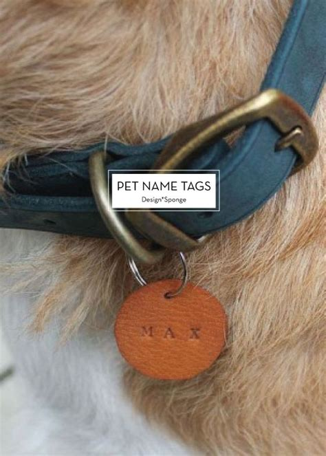 puppy name tags best 25 pet name tags ideas on id tags cat tags and cat id tags