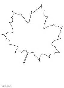 maple leaf coloring page autumn coloring pages maple leaves